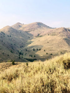 Breathtaking mountain views - 309 Madison Ave, Ketchum ID
